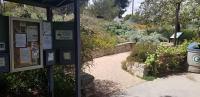 day 9 garden