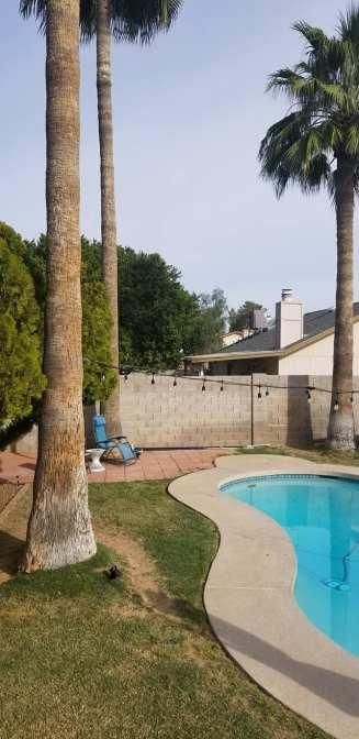 Phoenix pool
